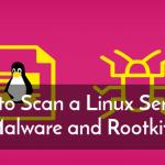 5 инструментов для сканирования Linux-сервера для вредоносных программ и руткитов